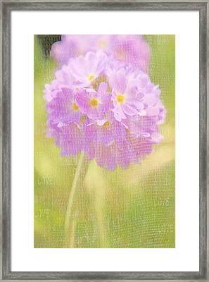Sphere Florale - 01tt01a Framed Print