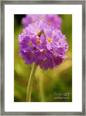 Sphere Florale - 07at01 Framed Print by Variance Collections