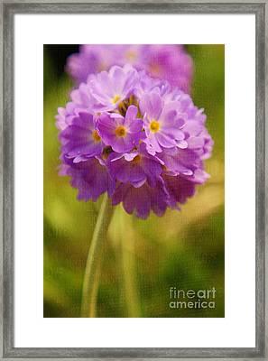 Sphere Florale - 07at01 Framed Print