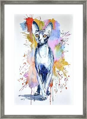 Sphinx Cat Framed Print
