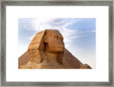 Sphinx Egypt Framed Print by Jane Rix