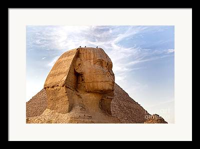 Sphinx Framed Prints