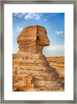 Sphinx Profile Framed Print by Jane Rix