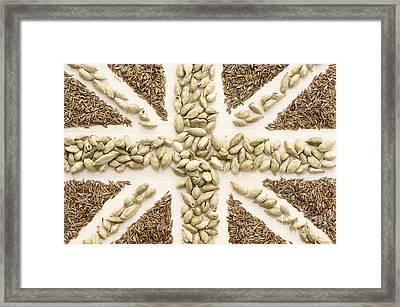 Spice Flag Framed Print