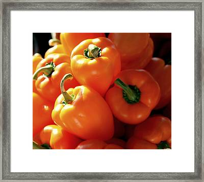 Spice It Up Framed Print by Karen Wiles