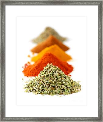 Spices Framed Print by Elena Elisseeva