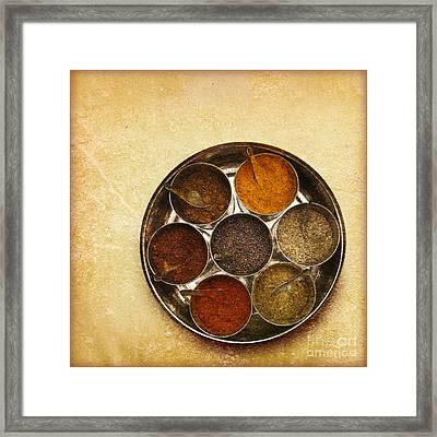 Spices Of India  Framed Print by Prajakta P