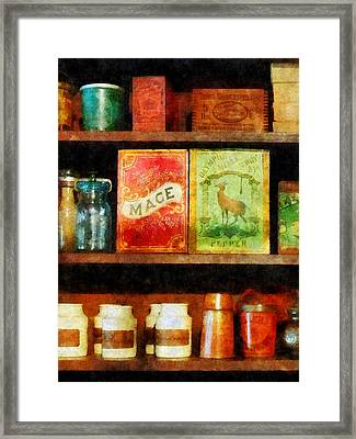Spices On Shelf Framed Print by Susan Savad