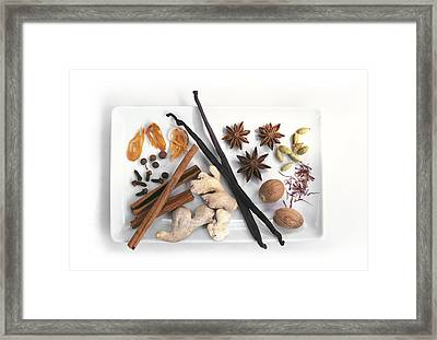 Spices Framed Print by Science Photo Library