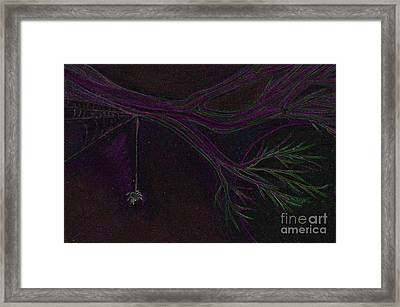 Spider Branch By Jrr Framed Print by First Star Art