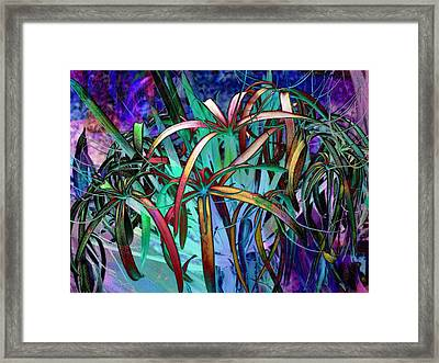 Spider Lilly Framed Print by Athala Carole Bruckner