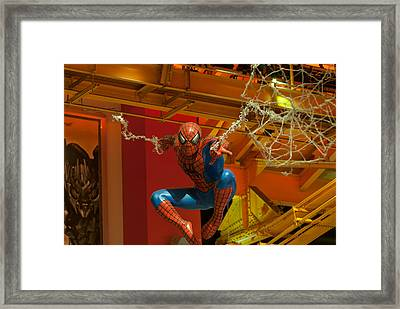 Spider Man Framed Print by Paul Mangold