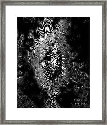 Spider Noir Framed Print