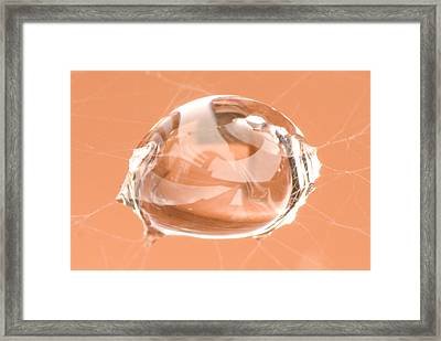 Spider's Tear Framed Print