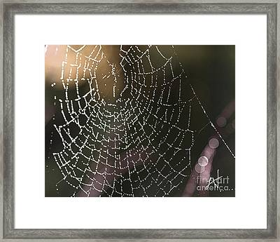 Spiderweb Green Framed Print