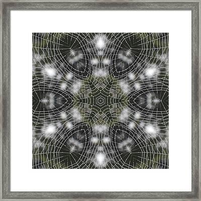 Spiderweb In Black Framed Print