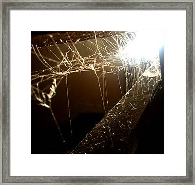 Framed Print featuring the photograph Spiderweb by Lucy D