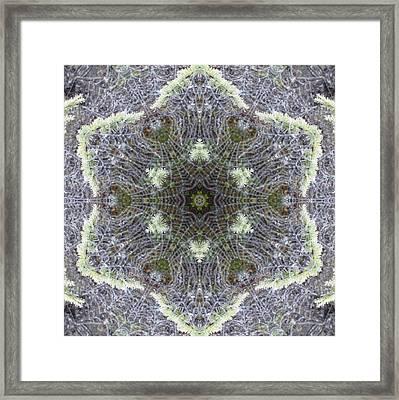 Framed Print featuring the digital art Spiderweb Pattern by Trina Stephenson