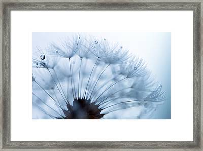Spin Round And Round Framed Print by Rebecca Cozart