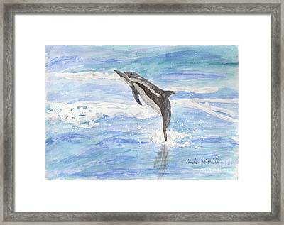 Spinner Dolphin Framed Print