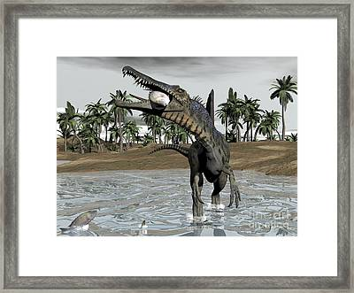 Spinosaurus Dinosaur Walking In Water Framed Print by Elena Duvernay