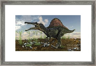 Spinosaurus In A Desert Landscape Framed Print by Kostyantyn Ivanyshen