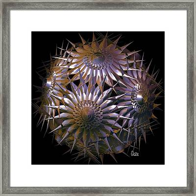 Spiny Beauty Framed Print by Julie Grace