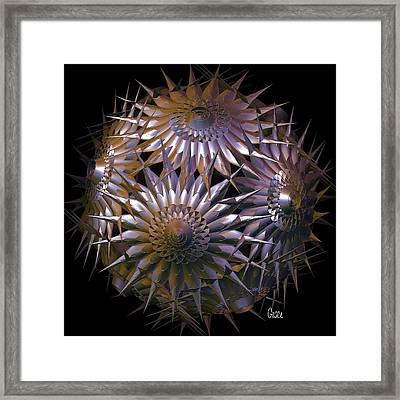 Spiny Beauty Framed Print