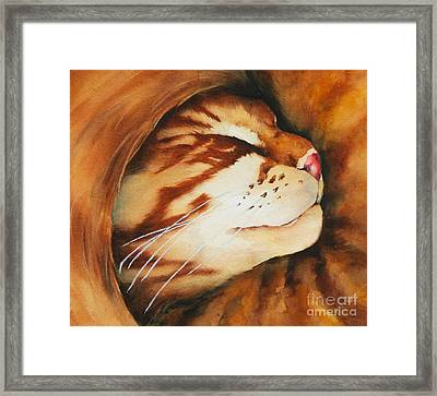 Spiral Cat Framed Print
