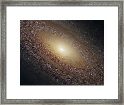 Spiral Galaxy Ngc 2841, Hst Image Framed Print by Science Photo Library