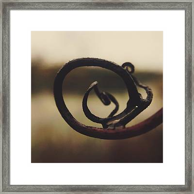 Framed Print featuring the photograph Spiral Inside by Nikki McInnes