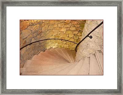 Spiral Nature Framed Print by Sonali Gangane