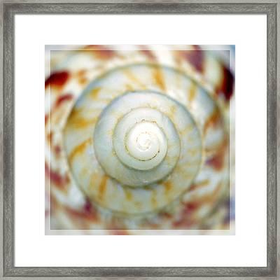 Spiral Framed Print by Tommytechno Sweden