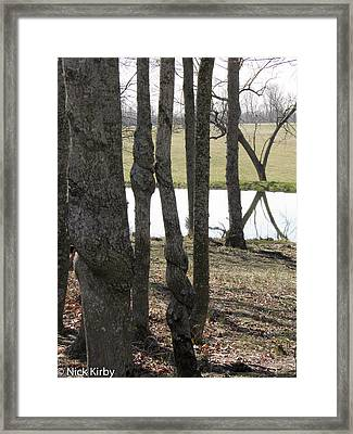 Framed Print featuring the photograph Spiral Trees by Nick Kirby