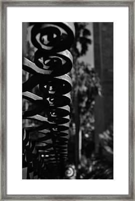 Spiraling  Framed Print by Tara Miller