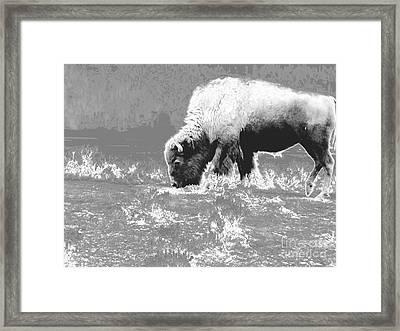 Spirit Bison Framed Print