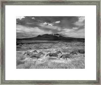 Spirit Horses Framed Print by Dianne Arrigoni