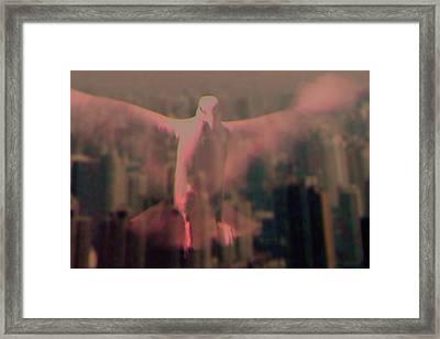Spirit Framed Print by Li   van Saathoff