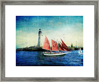 Spirit Of Buffalo Framed Print by Lianne Schneider