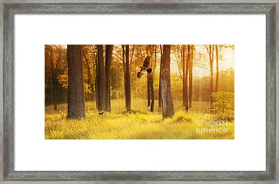 Spirit Of The Forest Framed Print by Rima Biswas