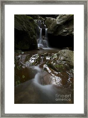 Framed Print featuring the photograph Spirit Of The Forrest  by Gary Bridger