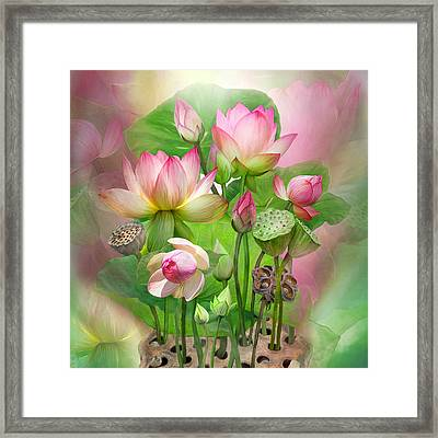 Spirit Of The Lotus - Sq Framed Print by Carol Cavalaris