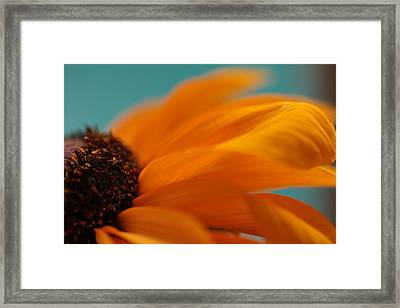 Spirit Of The Morning Framed Print by Connie Handscomb