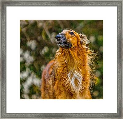 Framed Print featuring the photograph Spirit Of The North Wind by Charles Dana