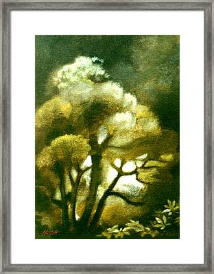 Spirit Of The Tarairi Tree Framed Print by Patricia Howitt