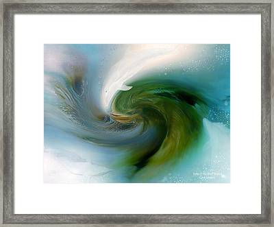 Spirit Of The White Dolphin Framed Print by Carol Cavalaris