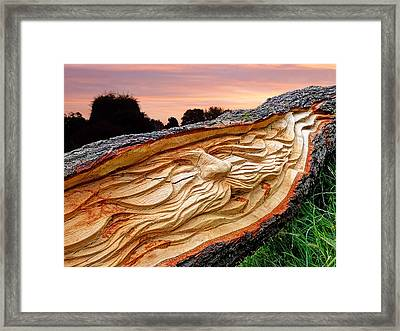 Spirit Of The Woods Framed Print by Gill Billington