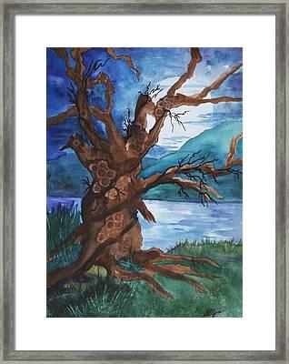Spirit Tree Framed Print