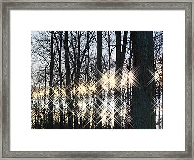 Spirits In The Woods Framed Print by Sharon Costa