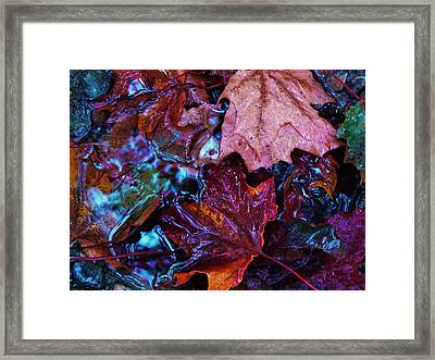 Splash Down Framed Print by Barbara St Jean